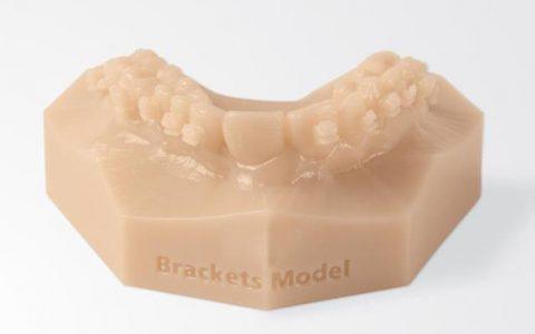 3D printani model Object30 OrthoDesk