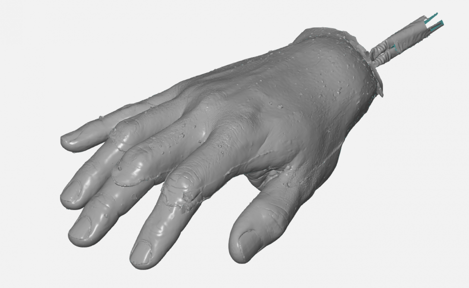 sken ruka